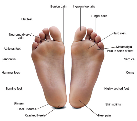 Common Foot Problems Hawaii Podiatry