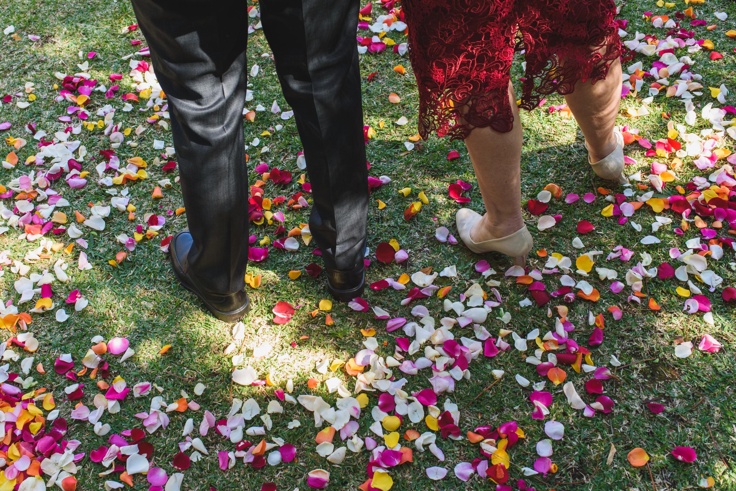 Zoo Wedding-169.jpg