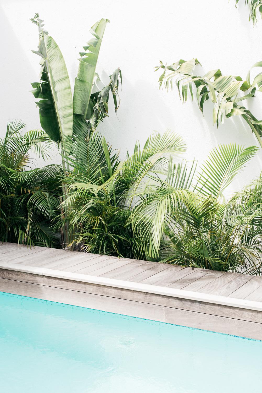 Jules and Louis Blog - Villa Palmier at St. Barth's - swimming pool