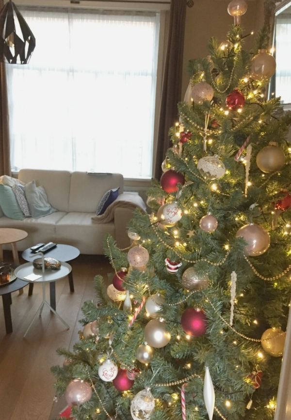 jules-and-louis-blog-our-christmas-tree.jpg