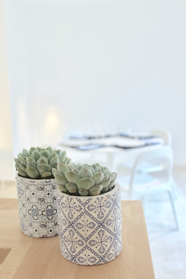 jules-and-louis-blog-blue-pots-succulents-view-dining-room.jpg