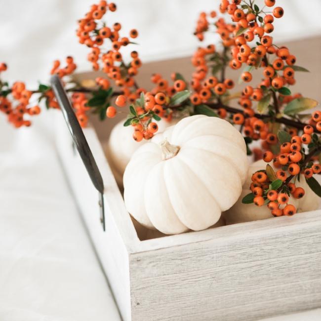 Jules and Louis blog - hoe maak je je huis herfstklaar - tray met pompoenen en vuurdoorn