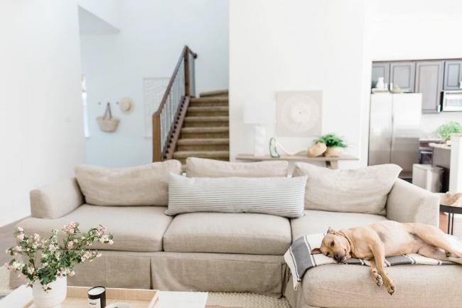 Jules and Louis Blog - Binnenkijken in een gezellig huis vol licht - living en zetel met hond