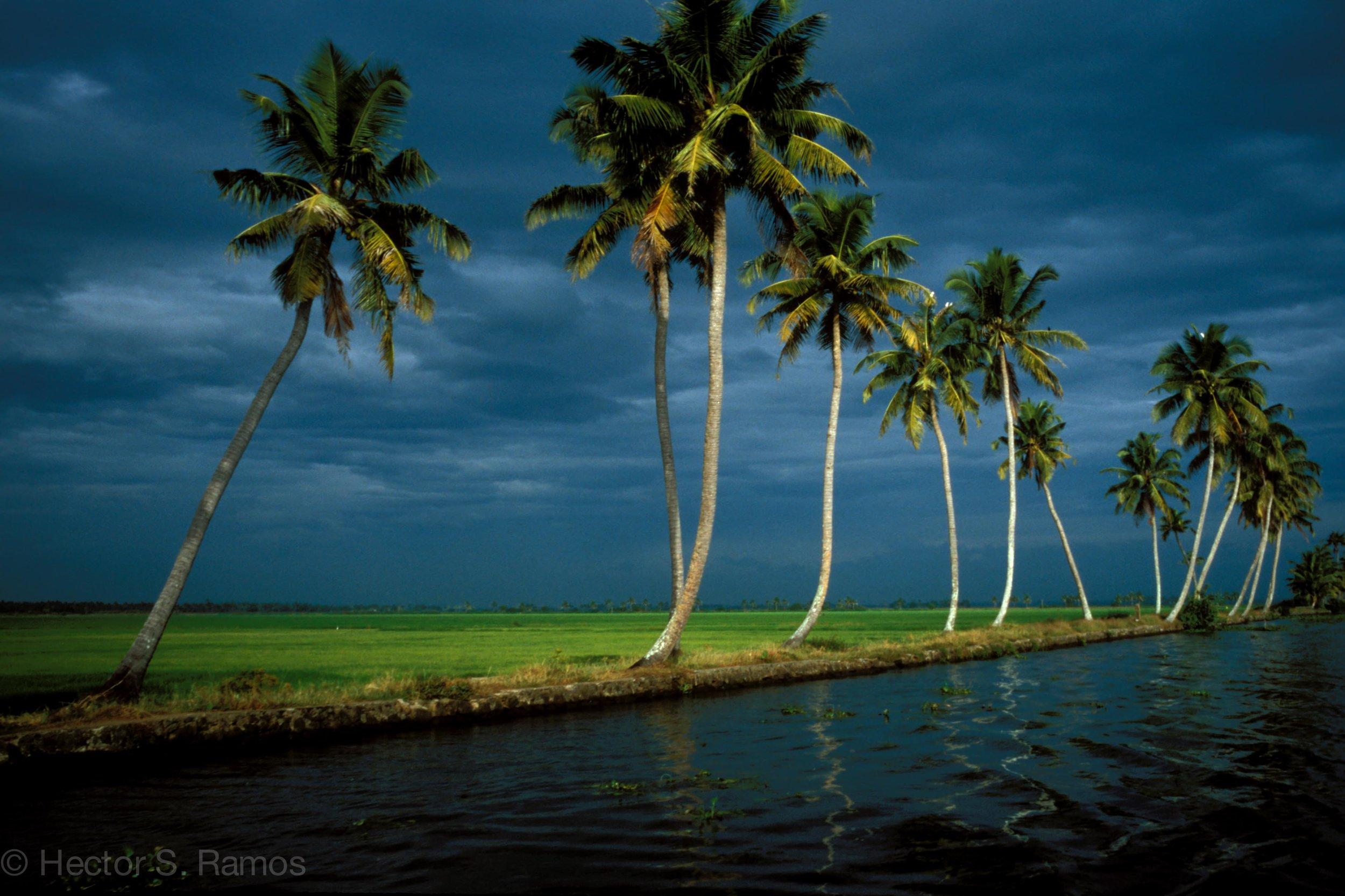 Kerala backwaters. Photo: Leica MP, 35mm Summilux, Velvia 50.