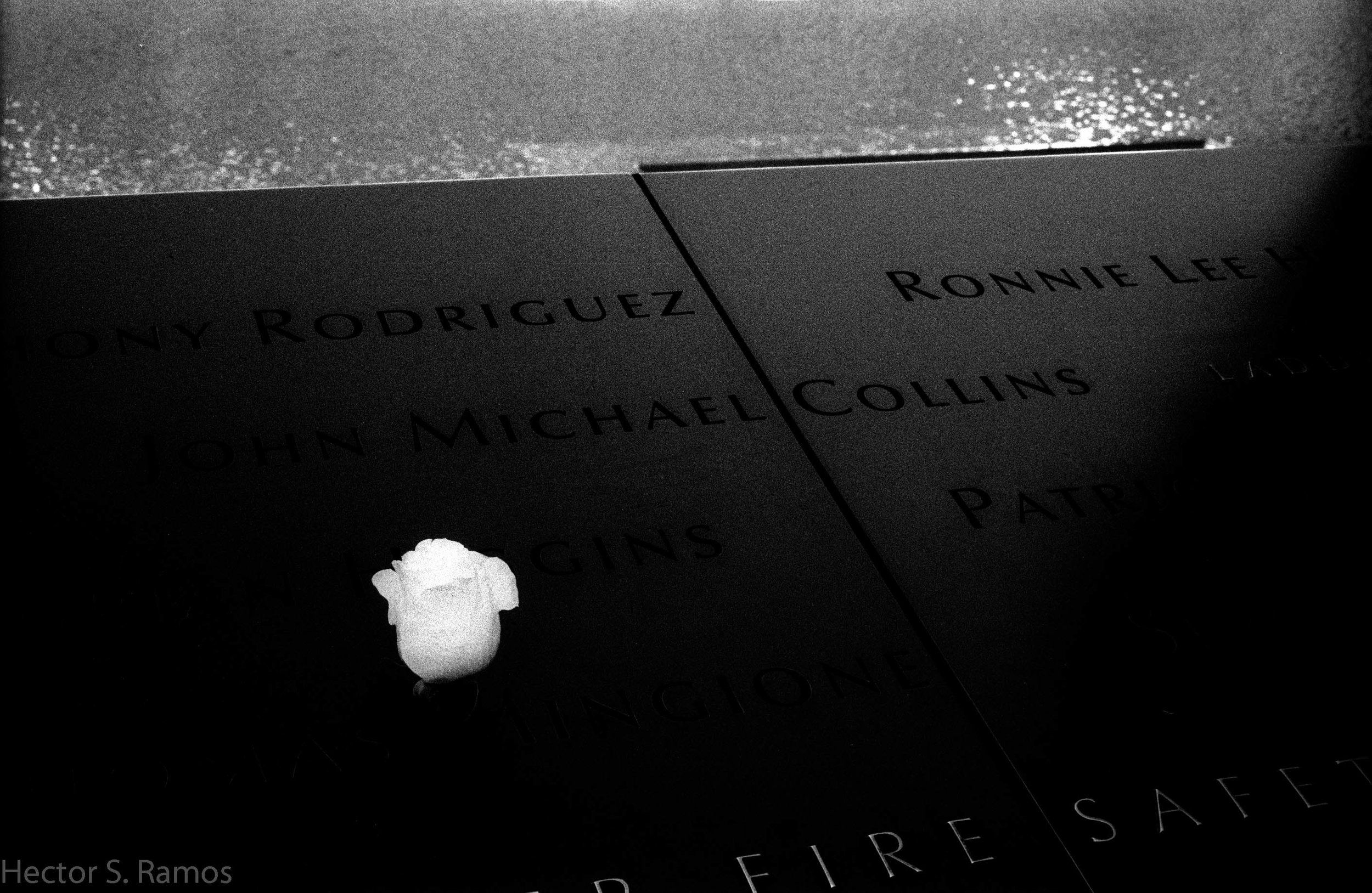 I saw people say prayers, touch the name of loved ones, shed tears and tell stories, and put rose flowers.  September 11 Memorial.