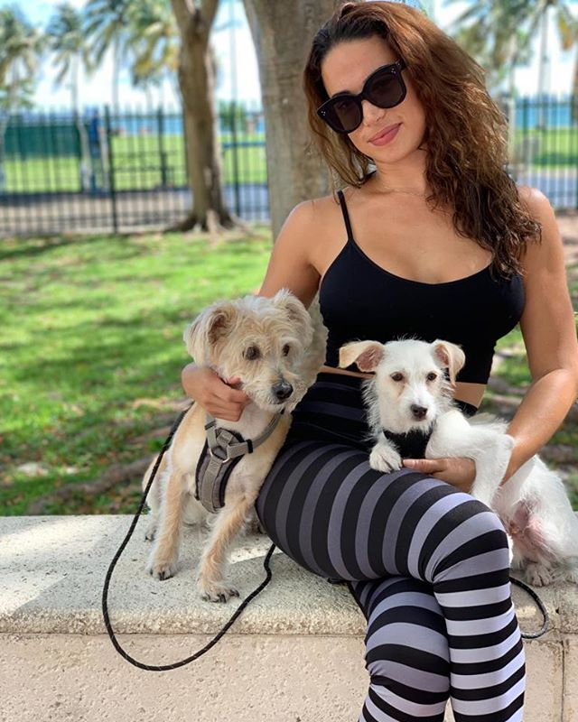 Back in Miami enjoying the sunshine with these two cuddlies, Sr. Hanky Panky @sirhankypanky and Philippe.