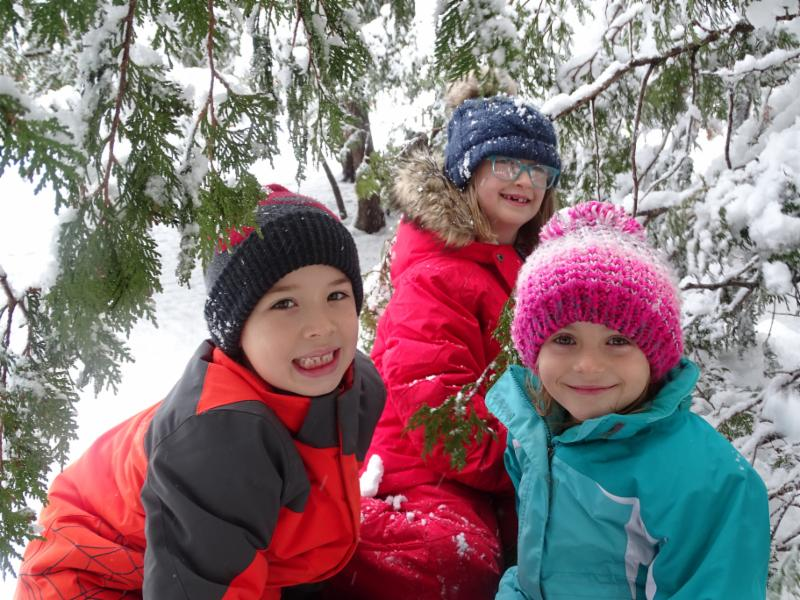 2nd graders Will Andrews, Maggie Reeve, and Cora Adams play in the cedar trees, which have become even more magical as their branches are laden with snow.