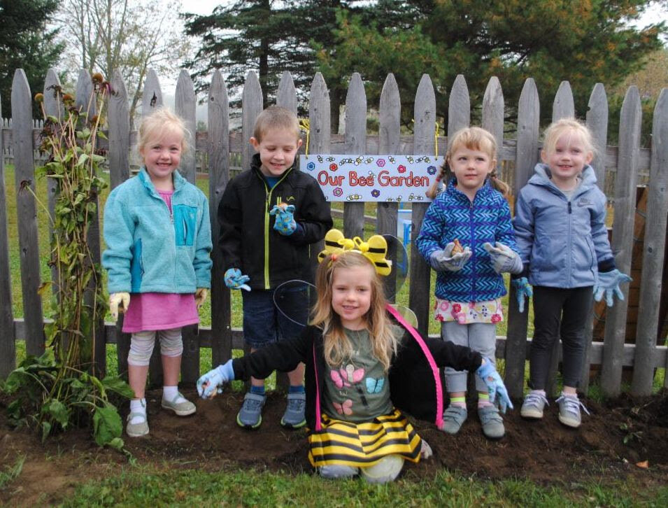 Our preschool class is establishing a bee-friendly garden as part of their study of bees this fall. This morning students like Cora, Carson, Zoe, Vivian, and Addyson worked in small groups to plant bulbs with Miss Heidi and Suzanne. The sign in the background has bees painted on it, which are made from each student's thumbprint.