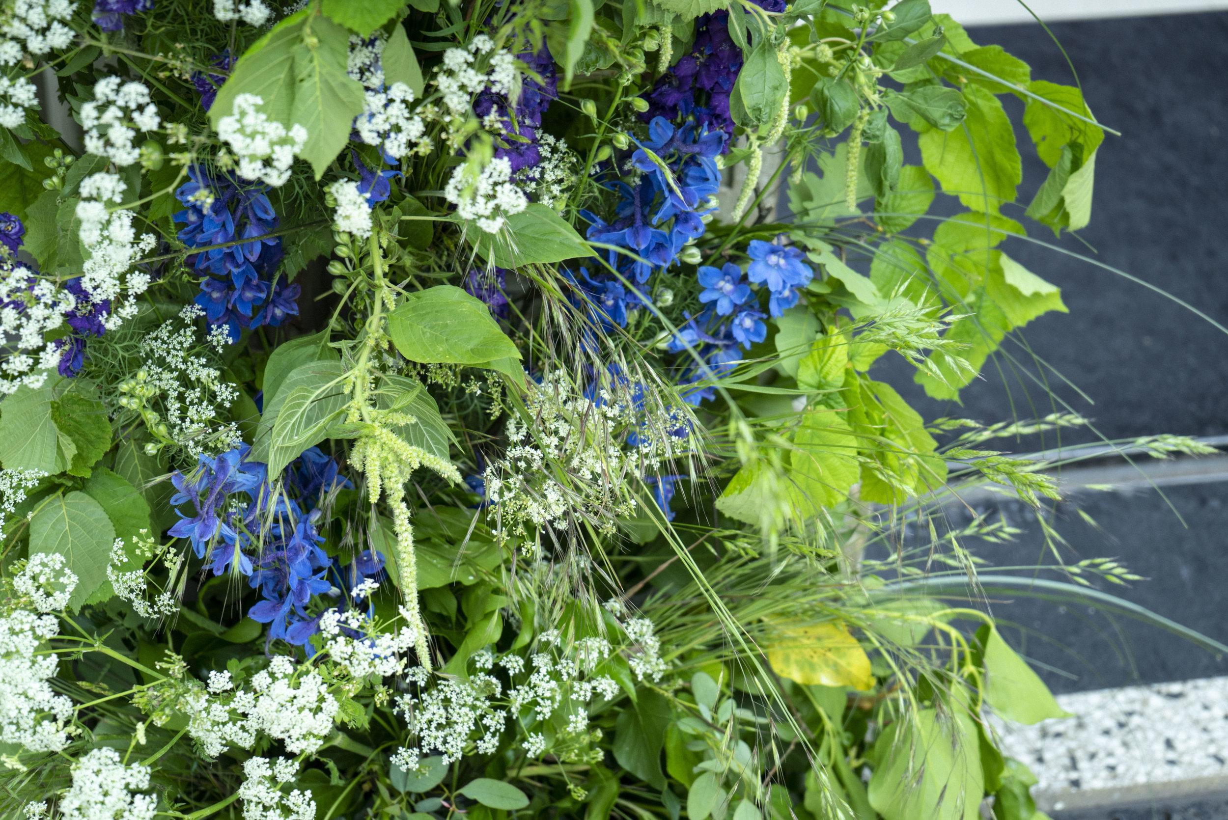 Hampton_Court_House_Flower_Arch_foam_free_close_up.jpg