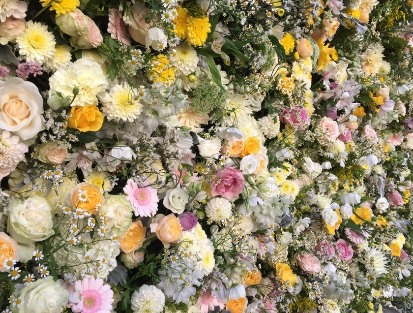 Flower_wall_Syon_Park.jpg