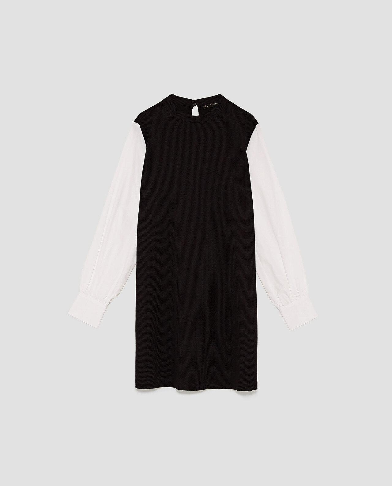 Zara Dress with Contrasting Sleeves.jpg