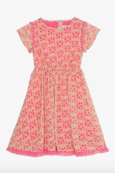 Wild & Gorgeous Wild Bird Dress in Pink.png