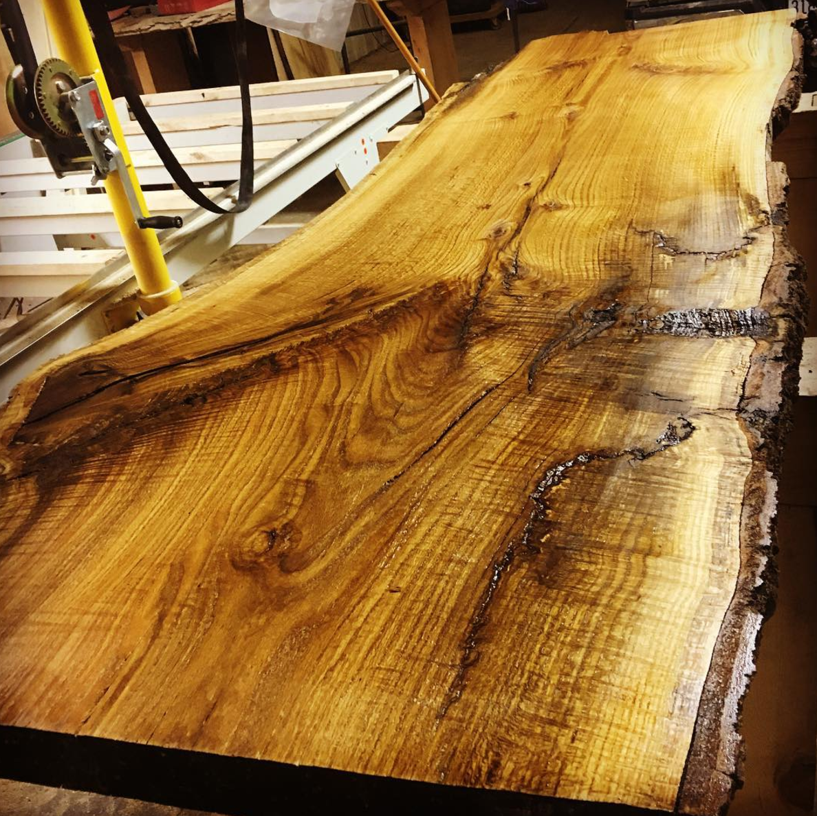 Minnesota Live Edge Slabs.png