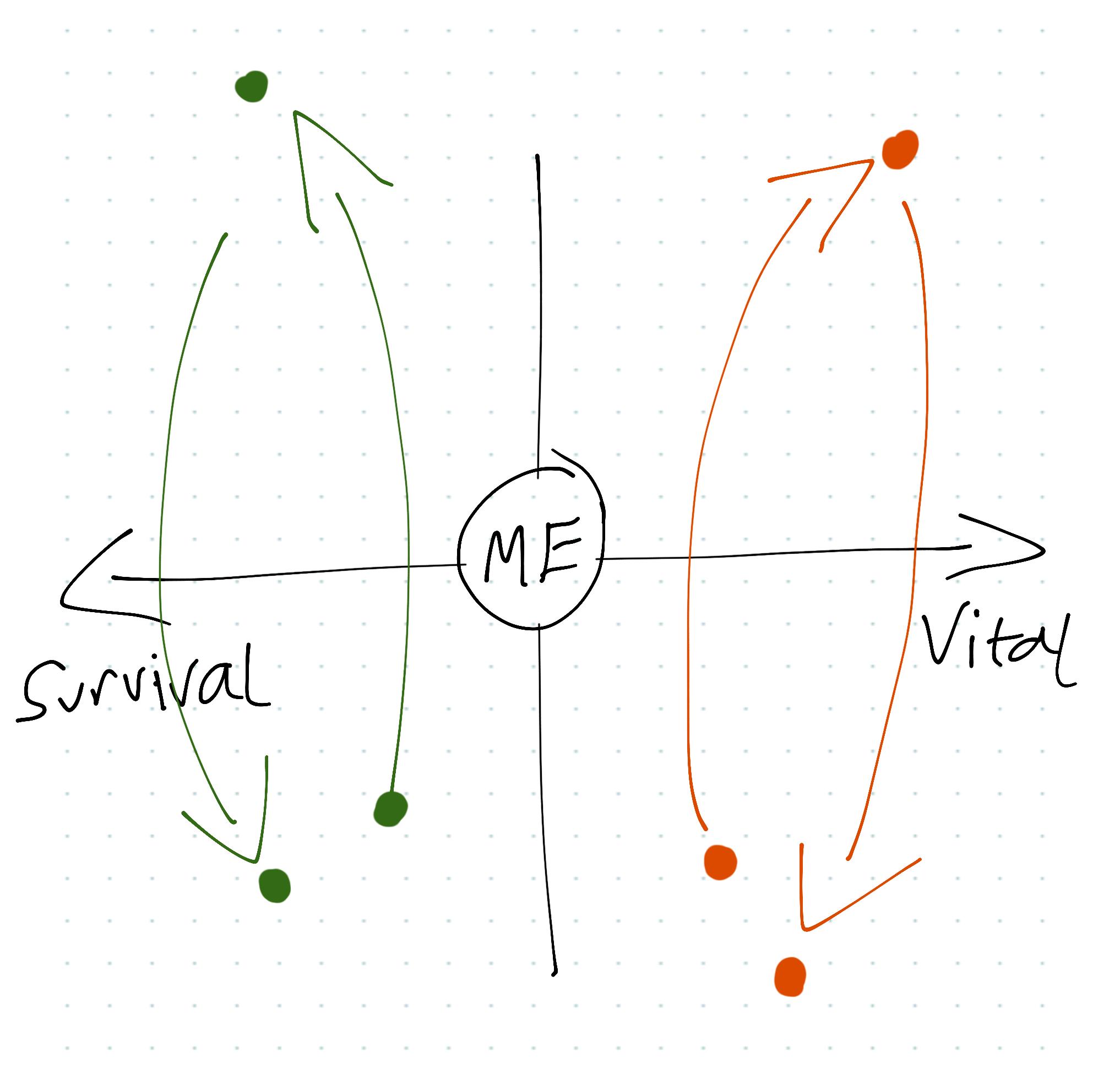 Survival Vital Matrix.png