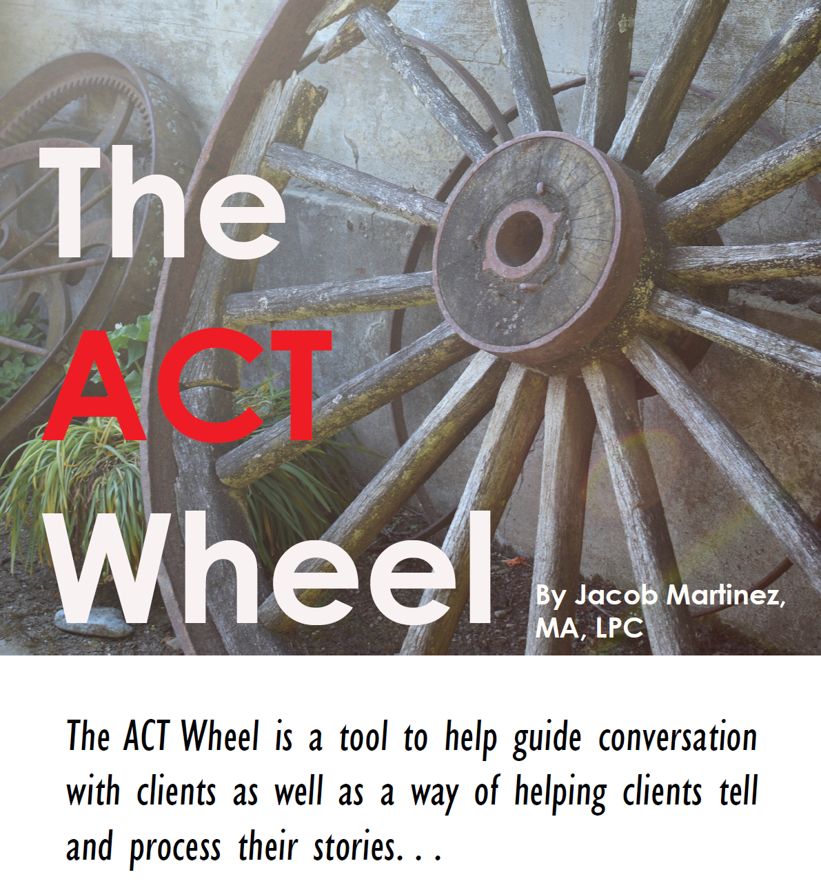 The ACT Wheel Image.PNG