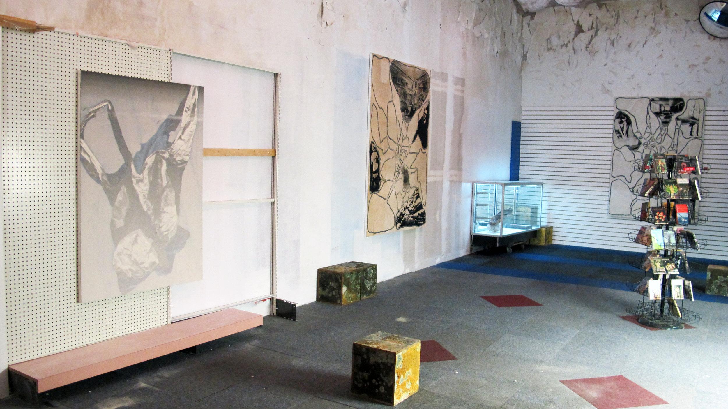 Freeman-Lowe, PANOPTICUM, Robert Miller Gallery, Installation View 27.JPG