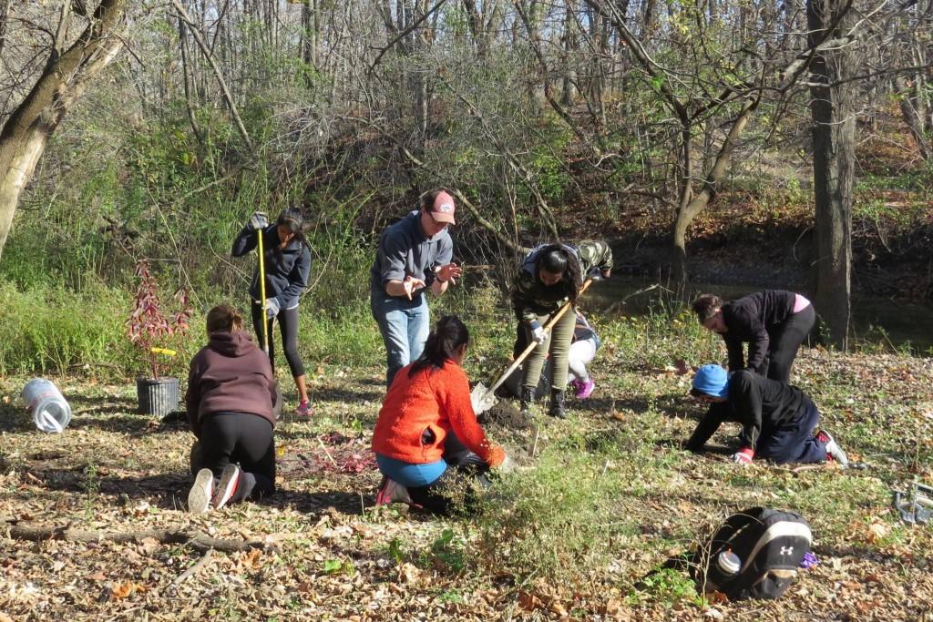 volunteers-planting-shrubs-2-1024x683.jpg