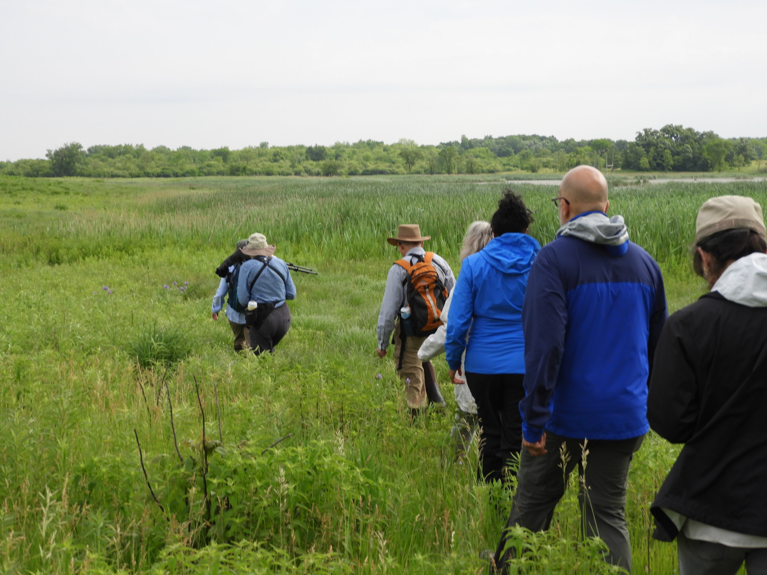Photo by Christine Williamson - Intrepid Birders at Paul Douglas Forest Preserve