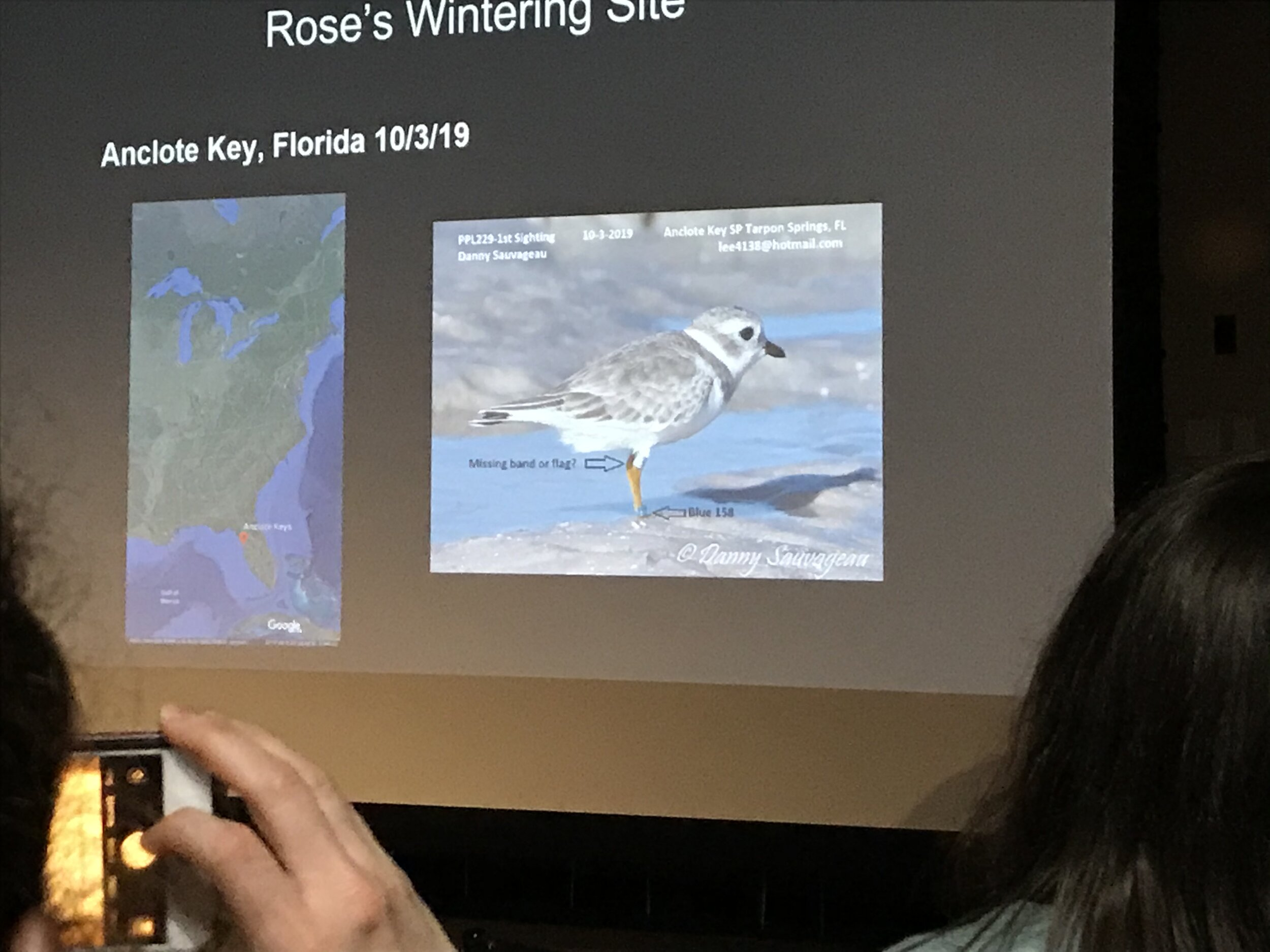 Slide from Dr. Cuthbert's presentation showing where Rose is overwintering. Photo: Aerin Tedesco