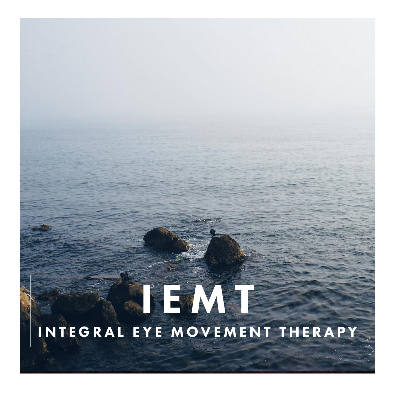 IEMT2.jpg