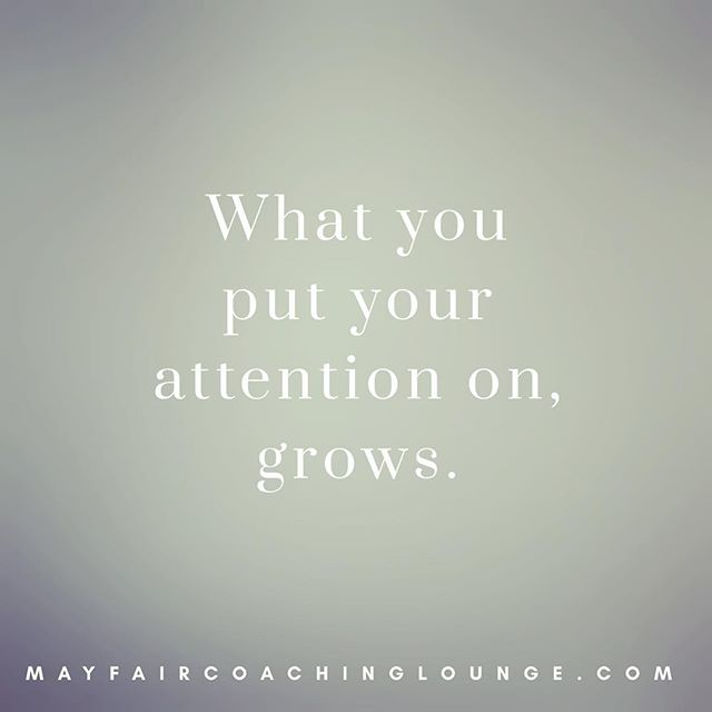 What you put your attention on, grows.  Tag someone who really needs to see this message today 👇  #anxiety #personaldevelopment #socialanxiety #personalgrowth #selfimprovement #takeachance #anxietyrecovery #anxietysupport #yougotthis #growth #selfworth #anxietymanagement #seizetheday #anxietycoach #positivemind #positivevibes #workplaceanxiety #positivethinking #impostersyndrome #coaching #mayfairlifecoach #lifelessons #londonlifecoach #selflove #balance #dailyaffirmation #love #selfcare #mayfairlondon