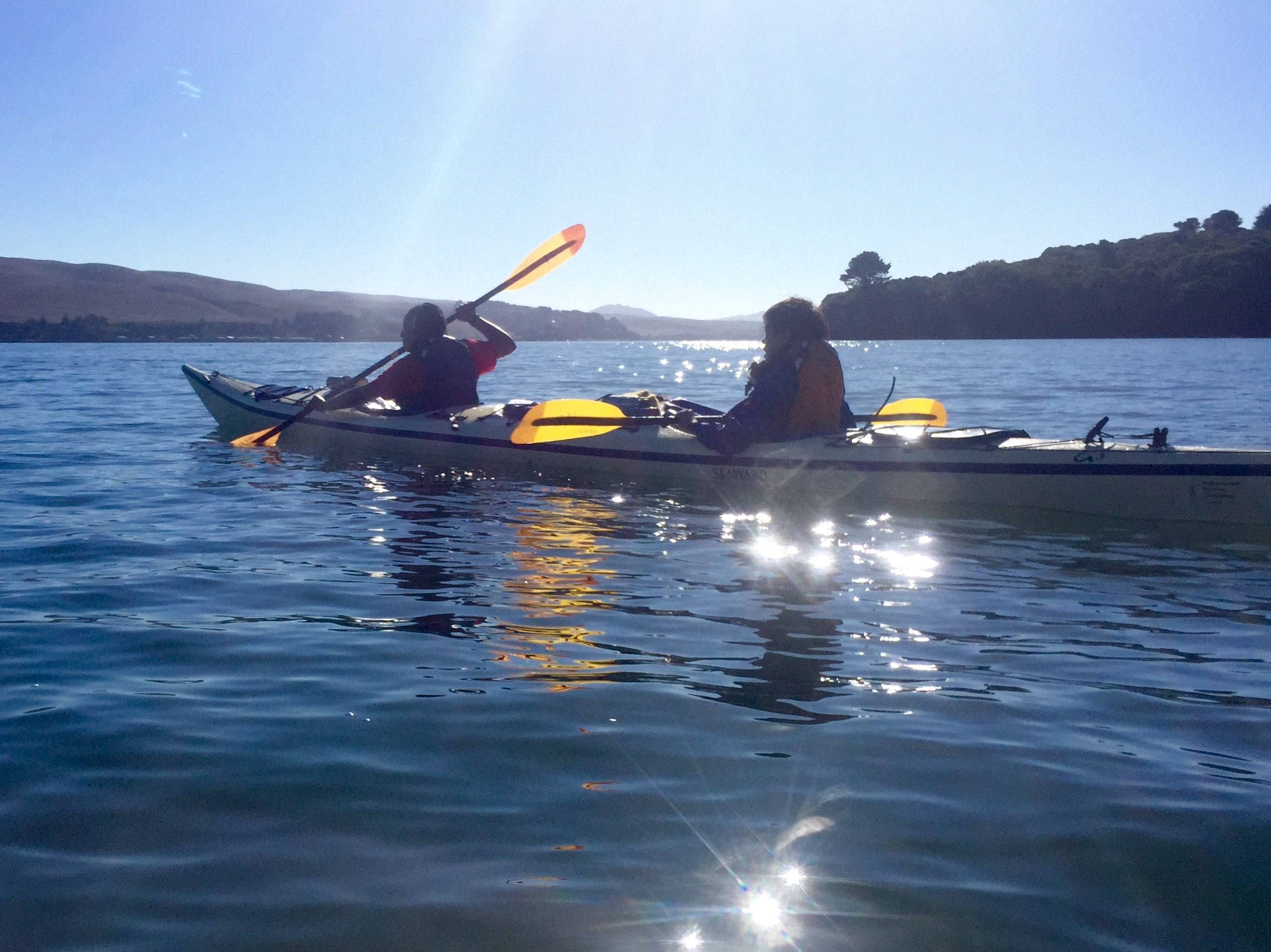 tomales bay kayaking