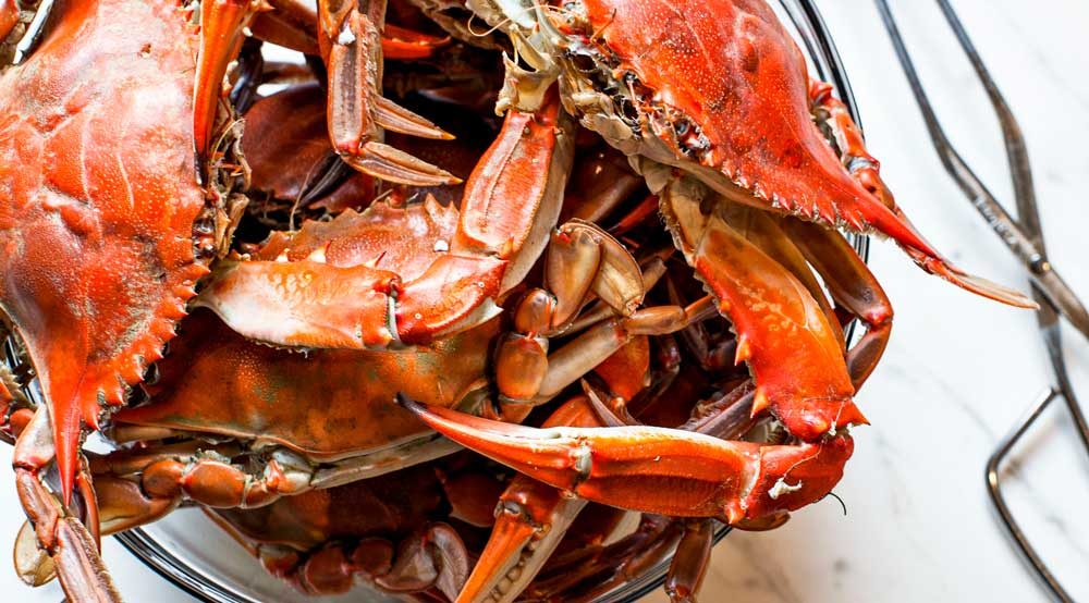 Big-T-real-crab.jpg