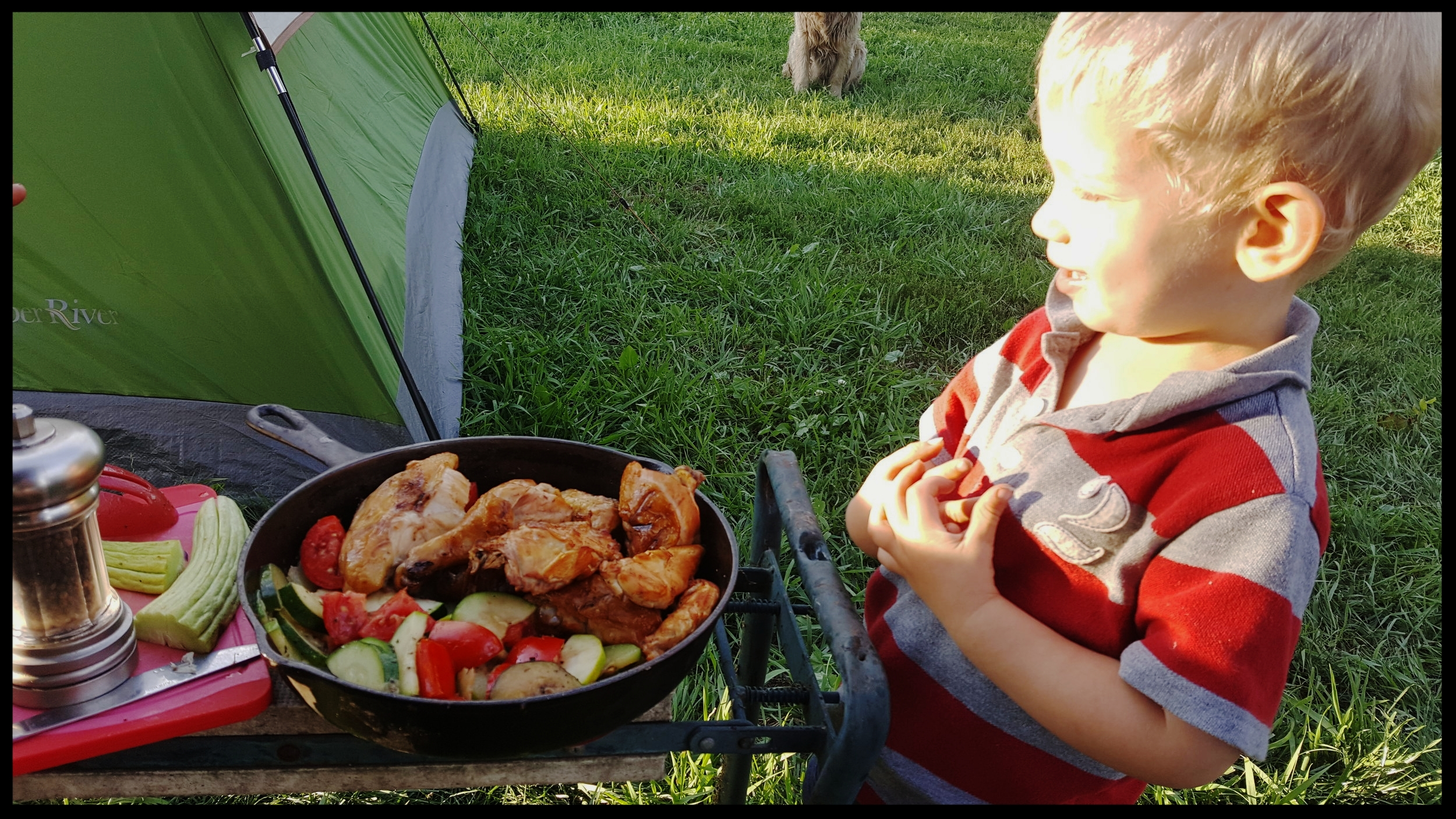 Elias getting ready to tear into some delicious grilled maple smoke chicken, and fresh tomatoes and zucchini from a neighbor that Allison sautéed.