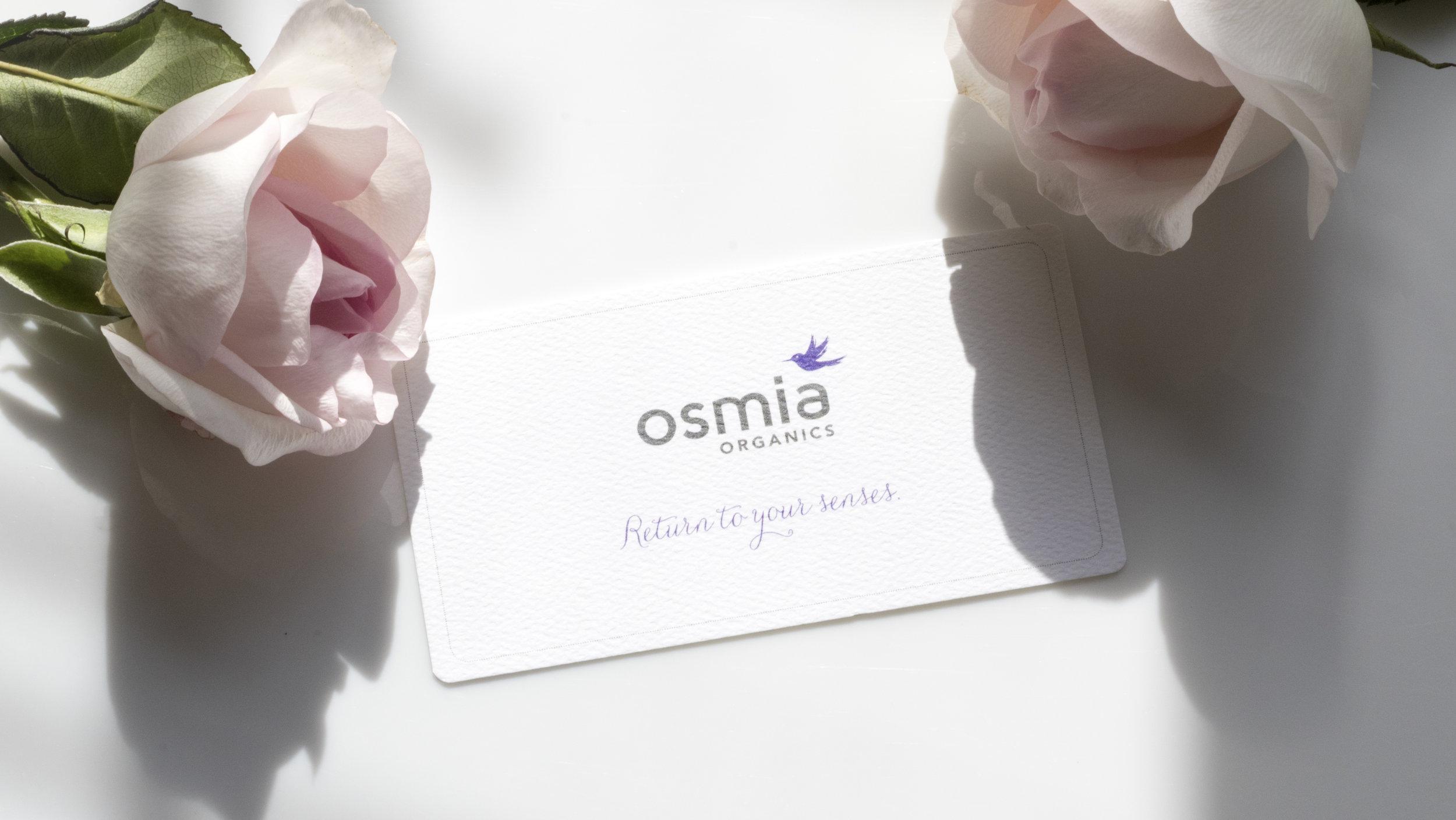 osmia_8blog.jpg