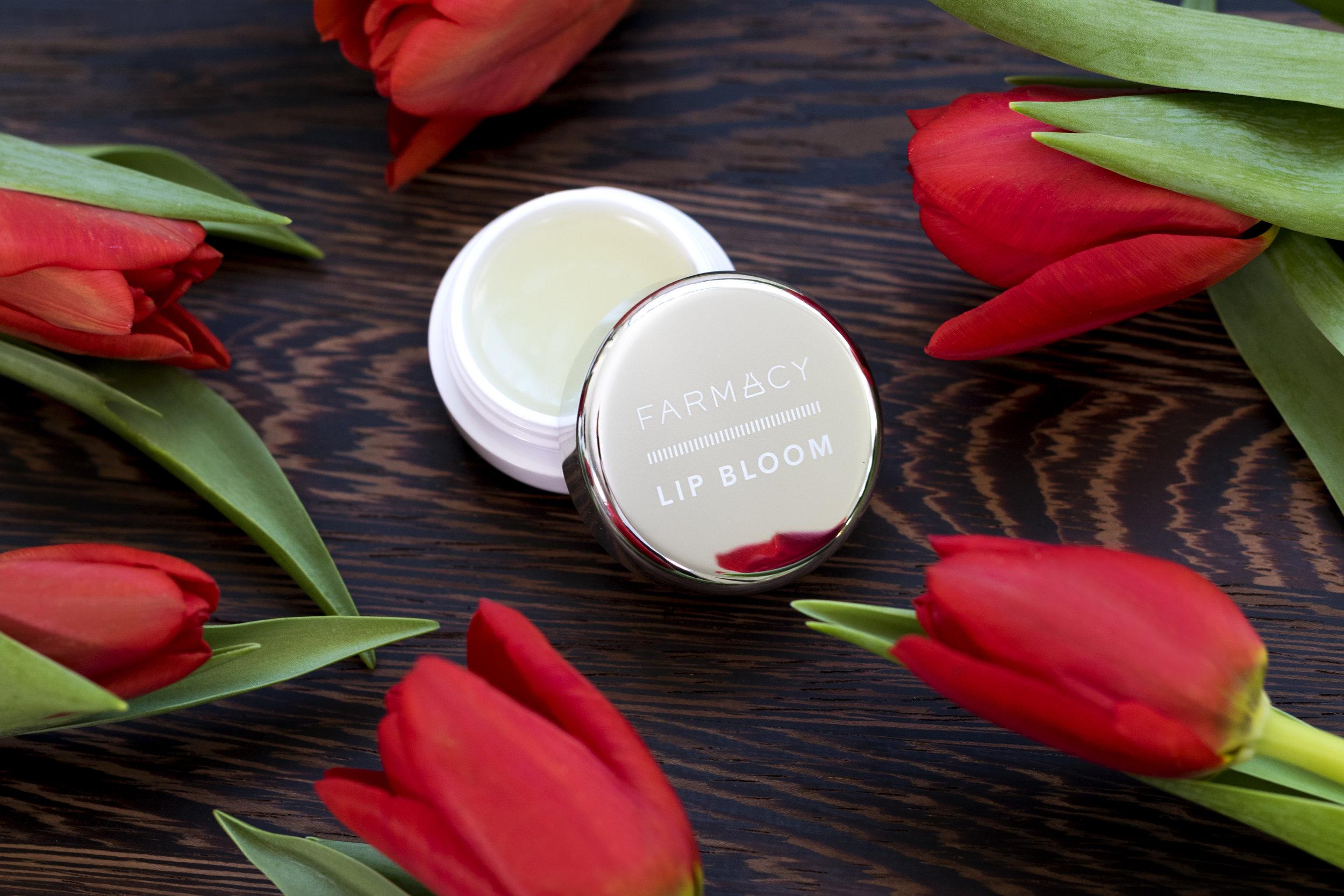 lipbloom_5.jpg
