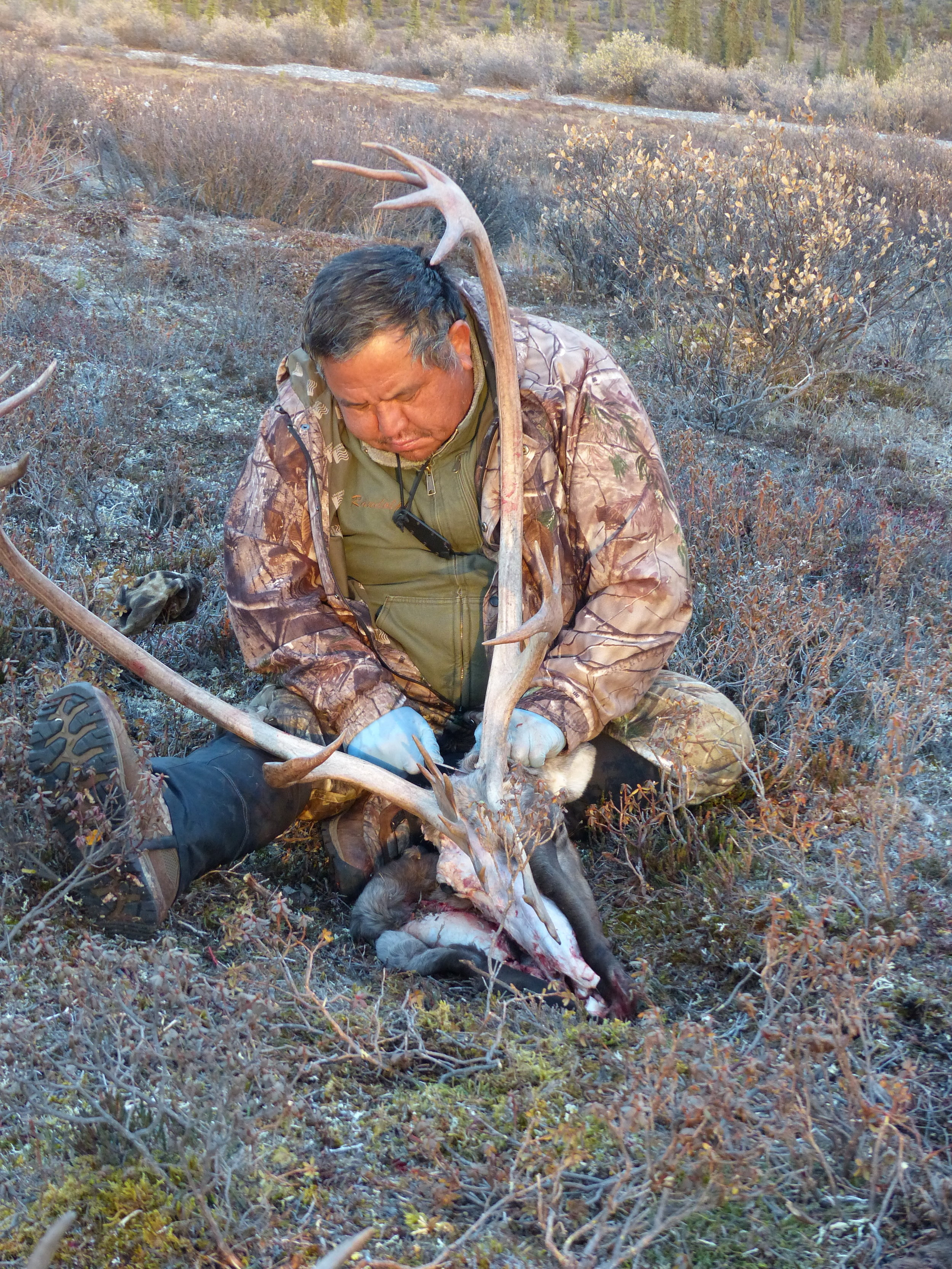 Randy cleans his caribou skull