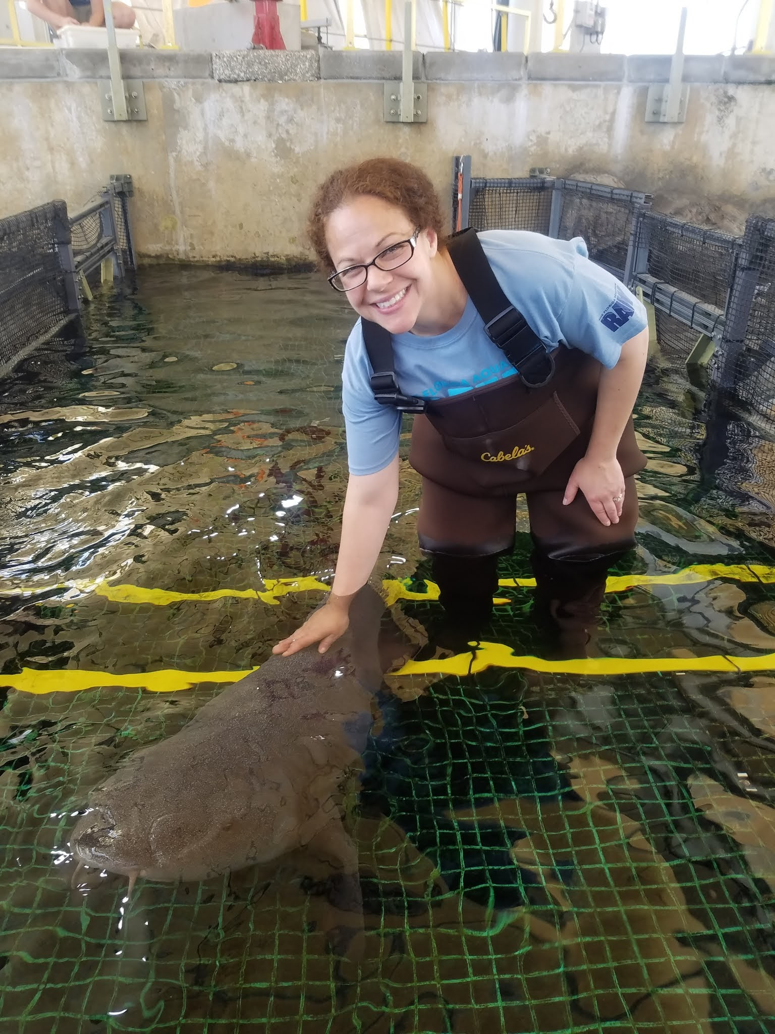 Shannon working with a nurse shark
