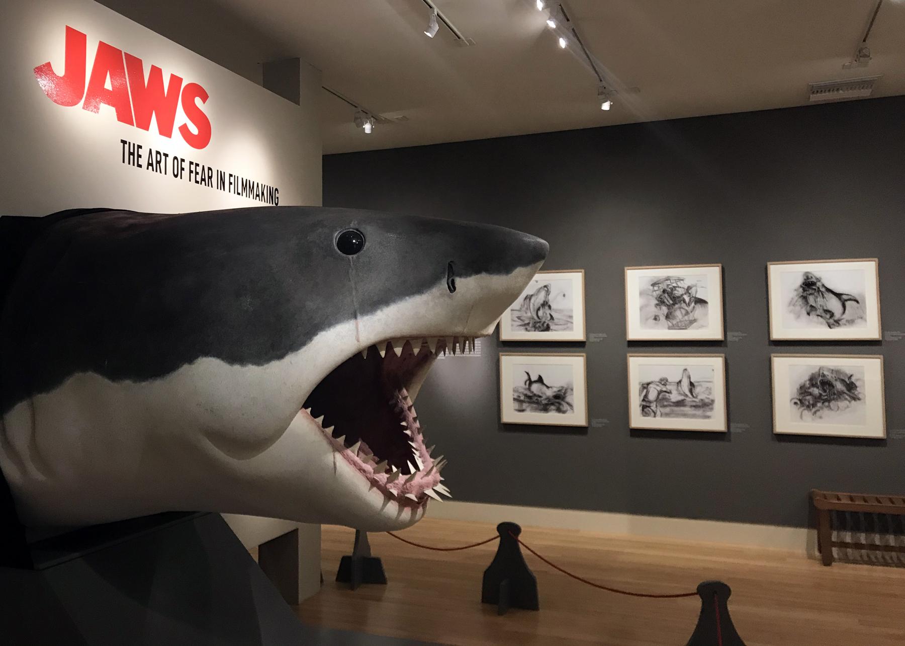 CIM-JAWS exhibition.jpg
