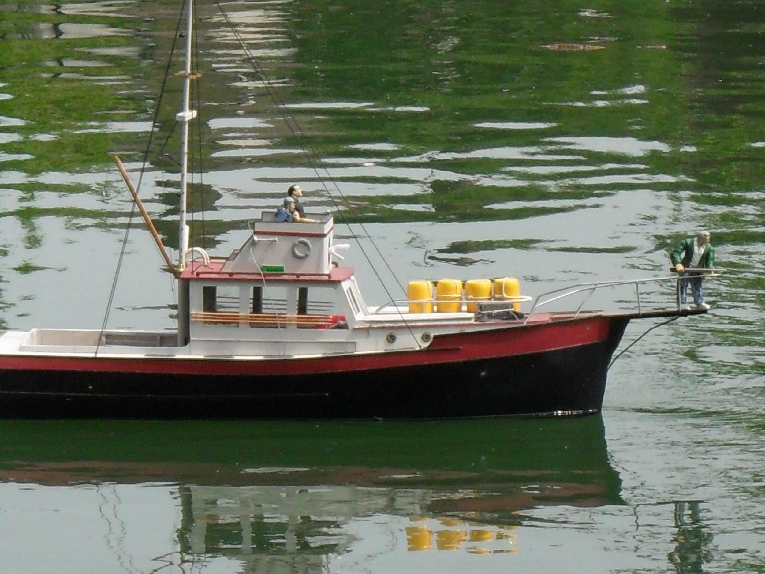 orca 5.jpg