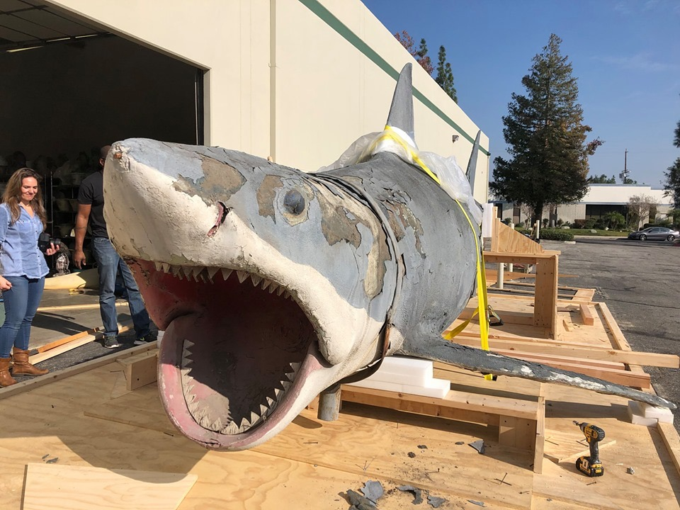 Junkyard Jaws arrives at his new home