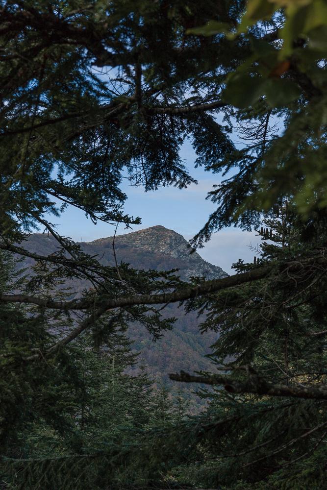 The  Les Agudes  peak 1703 m