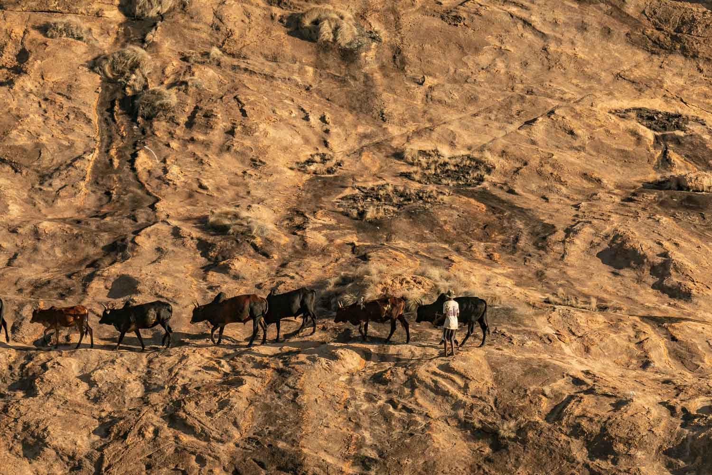 Madagascar Photo by Yuriy Ogarkov - Copyrighted-002.JPG