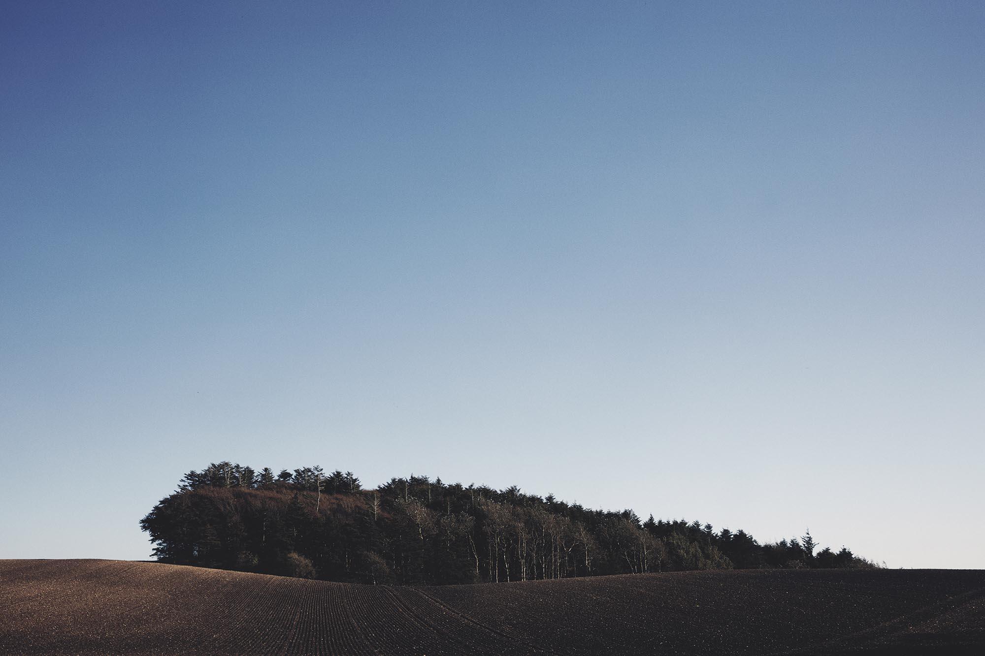 andreas-houmann-natur-03.jpg