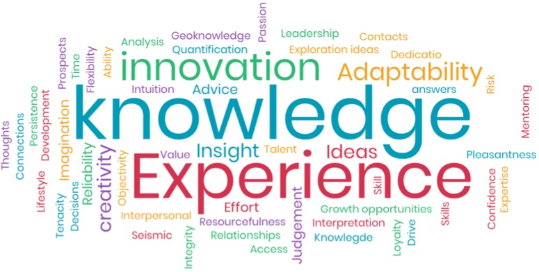 - PESGB participants were invited to submit in a word what it is that they believed potential employers were looking for in them, resulting in the word cloud opposite. Clearly knowledge and experience came on top – but there are other important elements captured like innovation, adaptability and insights.