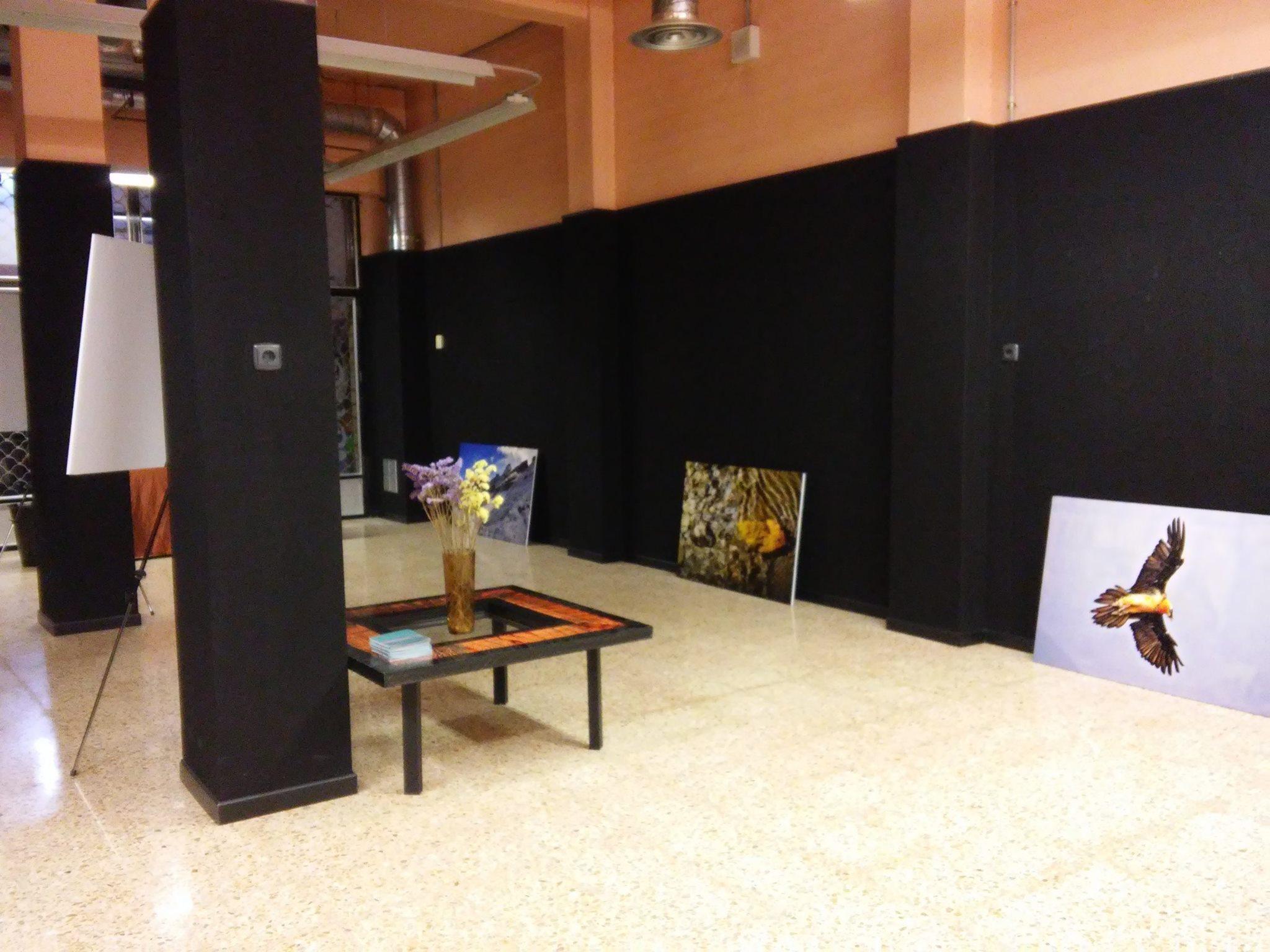 Montando la expo