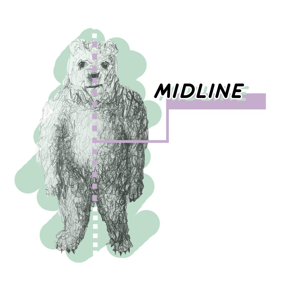 bear mid.jpg