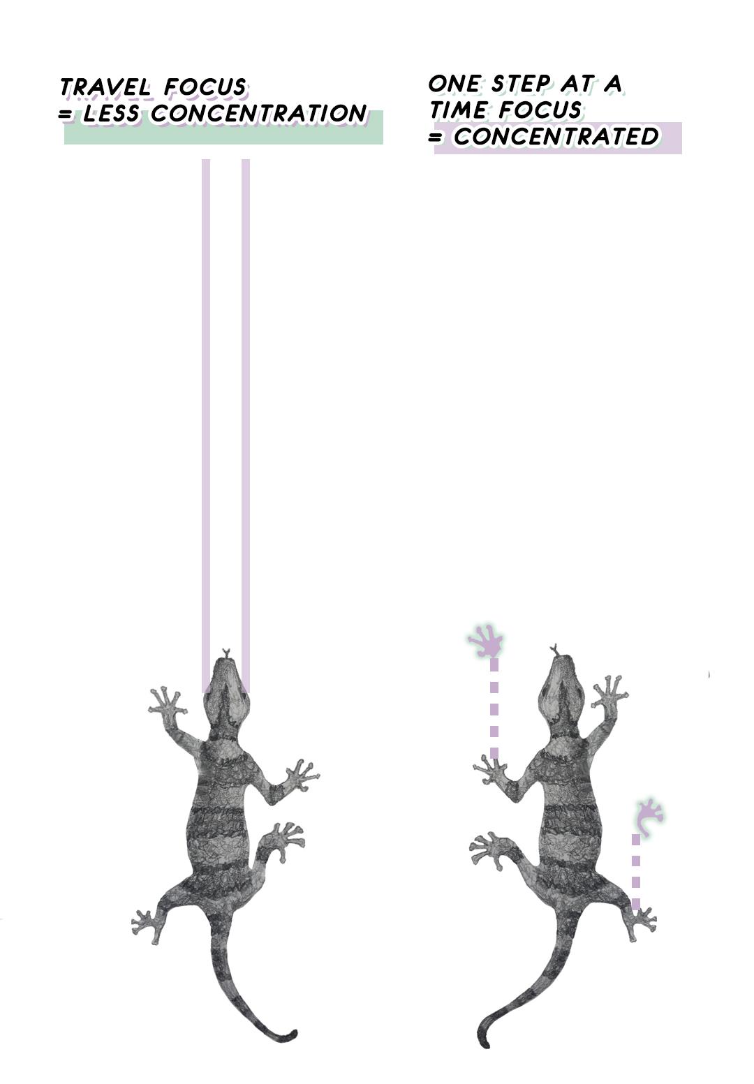 lizard focus.jpg