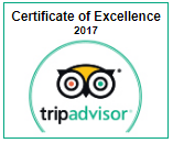 certificate of excellance 2017.PNG