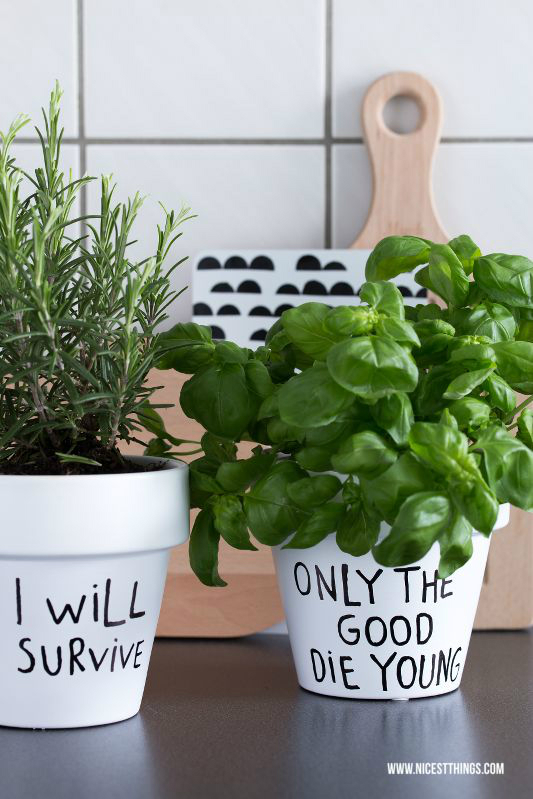 kitchen-decorating-ideas-with-herbs-33.jpg