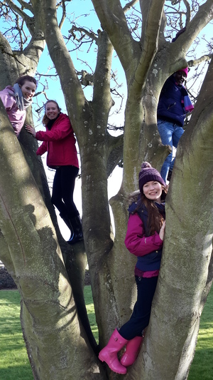 Like Zacchaeus, the team are always searching for a better view...