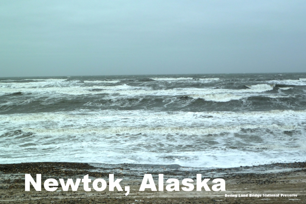 Initially located a reasonable distance from the Ninglick River, coastal erosion has the community of Newtok, Alaska, looking for a new permanent home. This case study shows that even with community willingness and some federal support, there are still institutional barriers to managed retreat.