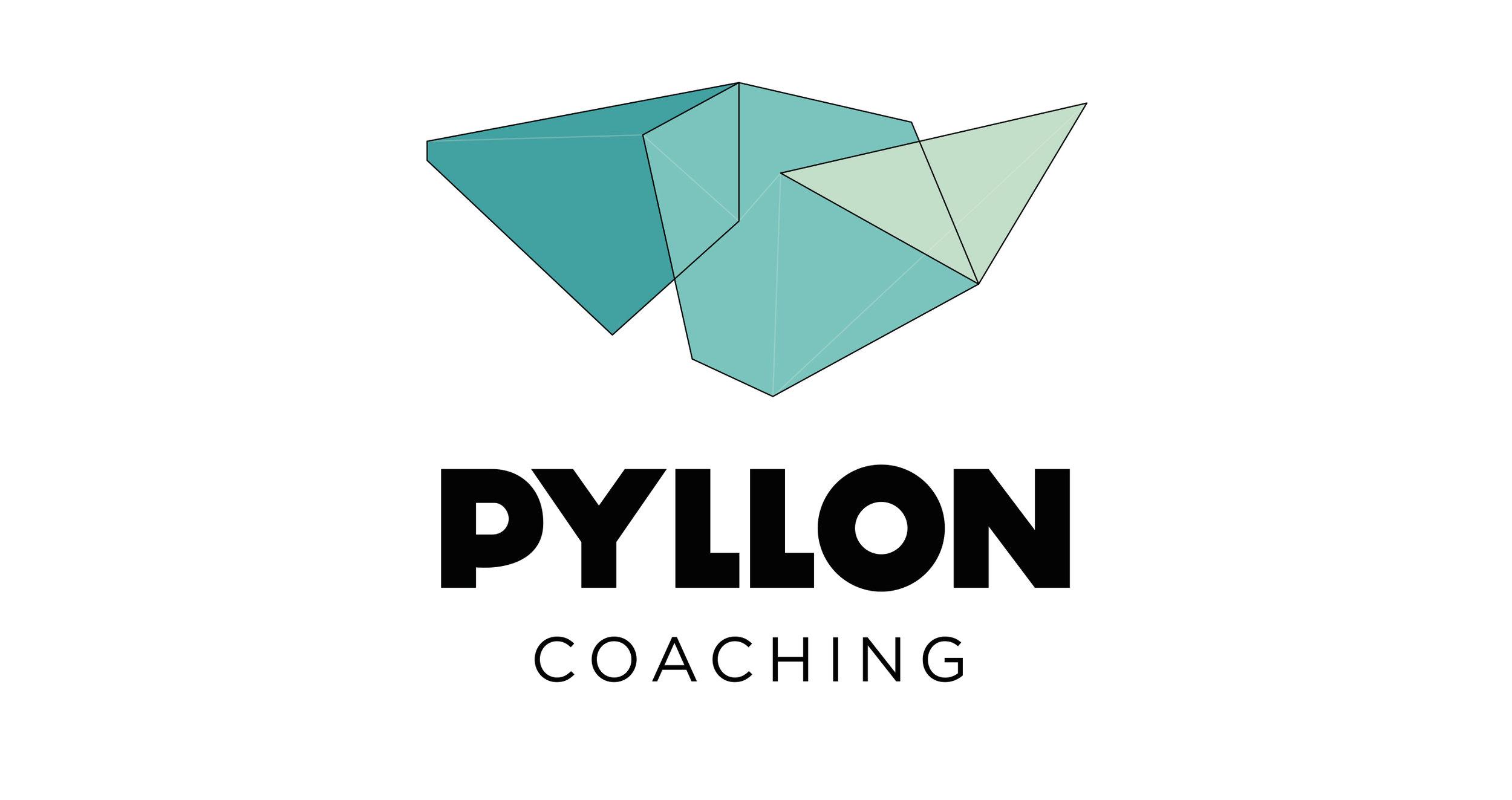 Pyllon_Logo.jpg