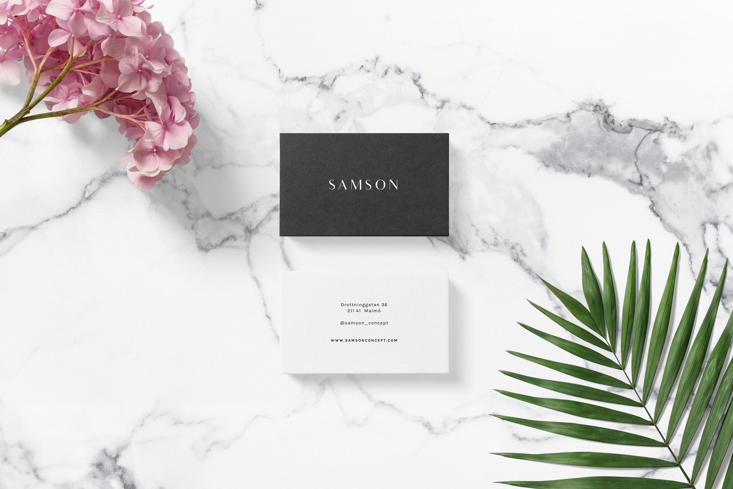 Samson-2.jpg