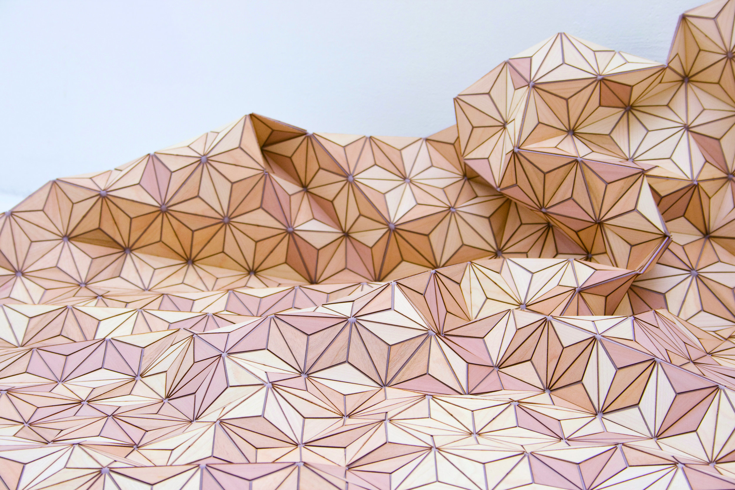 Elisa Strozyk  , Wooden Textile, No 1 , 2010 (detail). Apple wood, cherry, beech, maple, silk. 47 1/4 x 70 3/4 in. Courtesy of the Artist. 2016.ES.01.  Photo: Courtesy of  Sebastian Neeb and Elisa Strozyk  METHOD: Laser cut veneer wood, placed by hand