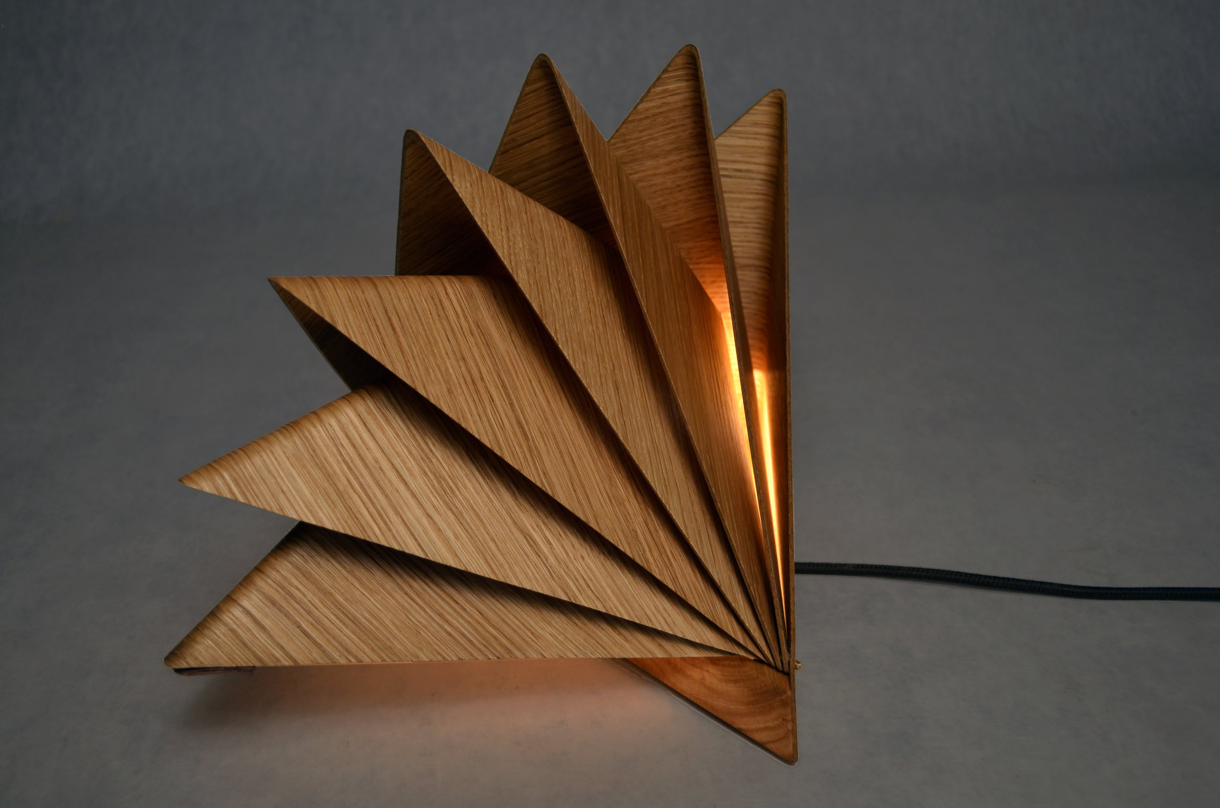 Klara Varosy  , Bloom , 2016.Solid oak, oak veneer, Plexiglas, leather, brass hardware, LED bulb & components.Closed: 9 1/4 x 13 1/4 x 8 1/2 in.Open: 15 x 13 1/4 x 10 in.Courtesy of the Artist.2016.KV.01. Photo: Courtesy of the Artist   METHOD: CNC (Computer Numerical Control router), laser cut, laser engraved, wet-bent, vacuum formed, handcrafted
